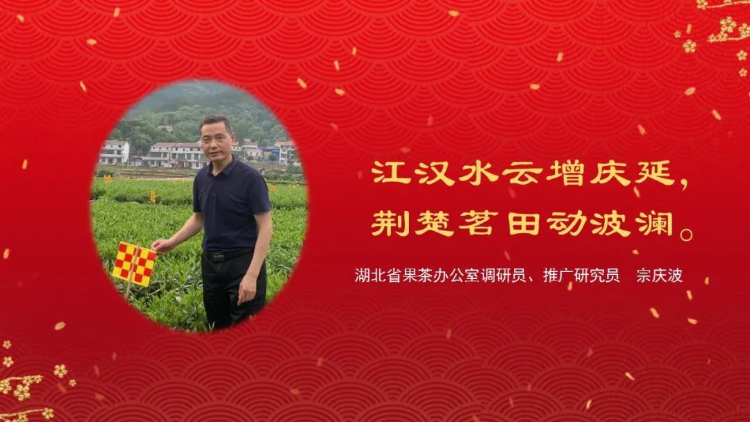 宗庆波:江汉水云增庆延,荆楚茗田动波澜